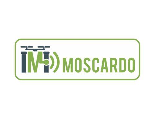 Moscardo