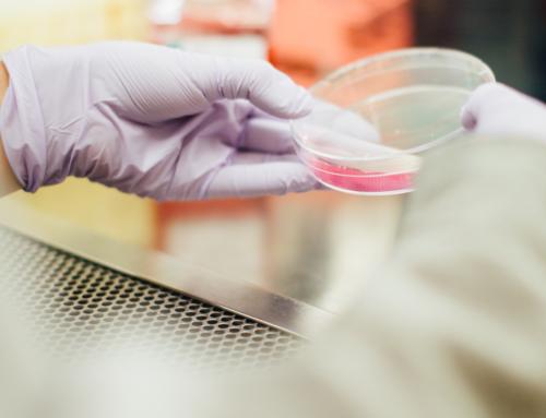 Sanità: in Toscana la ricerca scientifica è al servizio della salute